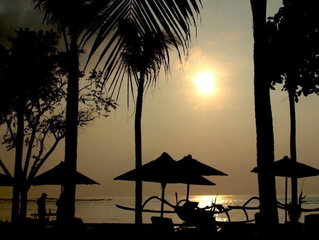 Tiga Guide Tak Bersertifikat di Bali Dihukum Denda Rp 25 Juta
