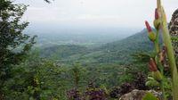 Bukan Cuma Candi, Borobudur Punya Wisata Ekstrem hingga Les Gamelan