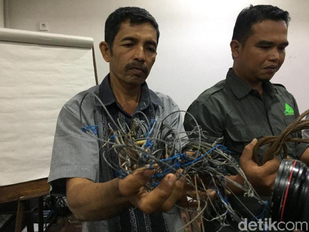 Pahit Manis Pak Syam 26 Tahun Jaga Hutan Leuser Tetap Lestari
