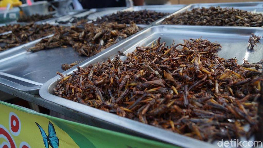 Foto: Icip-icip Kuliner Serangga di Thailand, Berani?