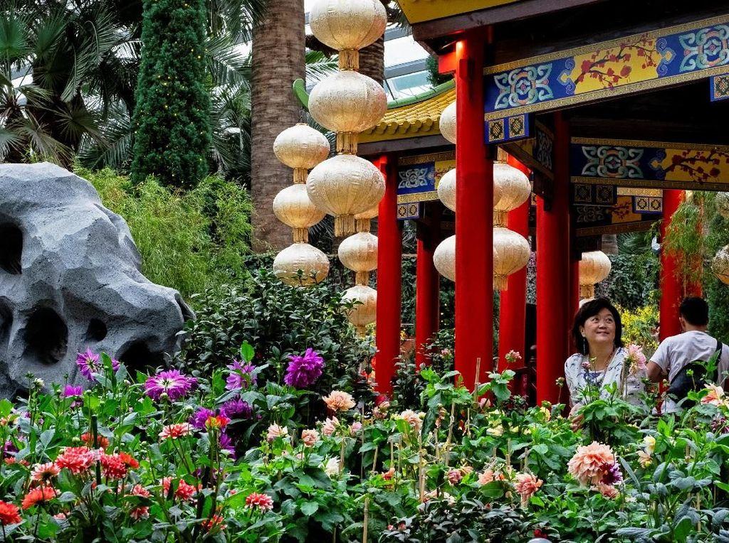 Cantiknya Pernak-pernik Jelang Imlek di Singapura