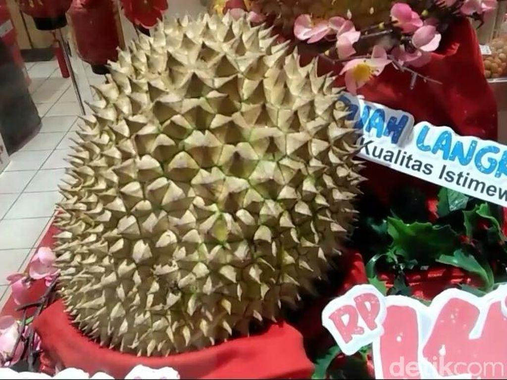 Di Tasikmalaya Durian Asal Banyumas Ini Dihargai Rp 14 Juta Sebuah, Mau Beli?