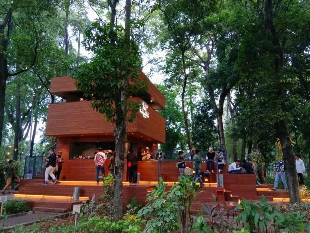 Di Jakarta Ada Kafe Ngehits di Tengah Hutan
