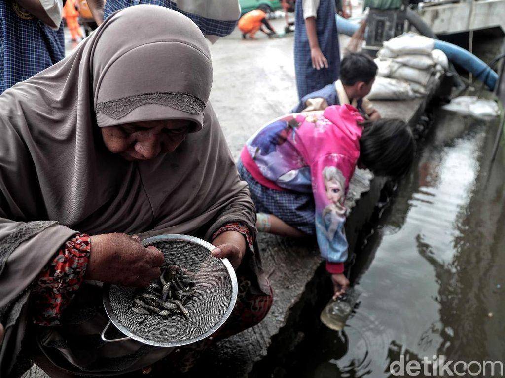 Pasca Banjir Rob, Warga Muara Angke Cari Ikan di Selokan