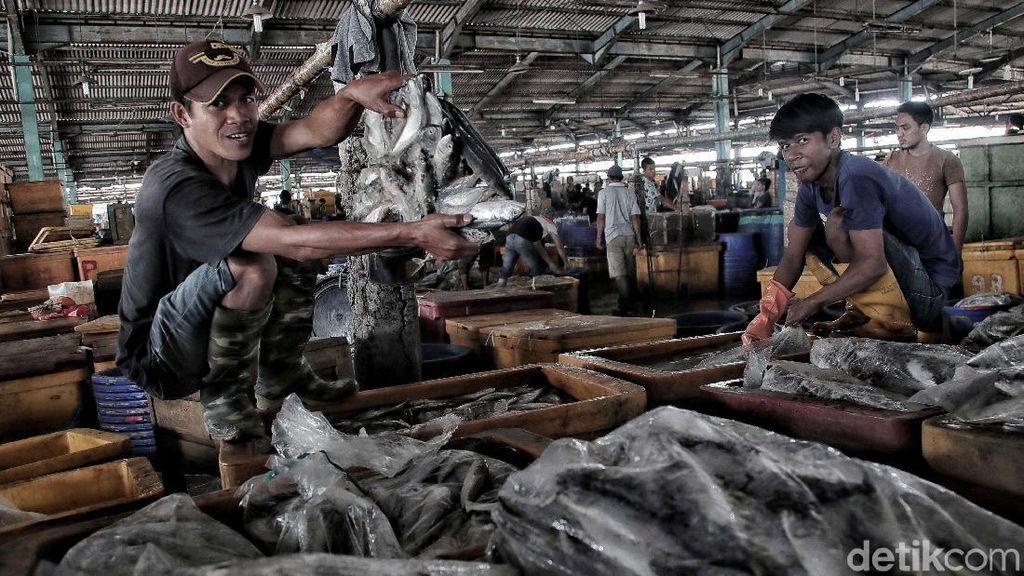 Melihat Aktivitas Pedagang Ikan Tradisional Jelang Relokasi