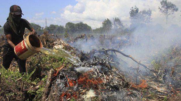 Jokowi soal Kebakaran Hutan: Bisa Kita Atasi, Bukan Tidak Ada