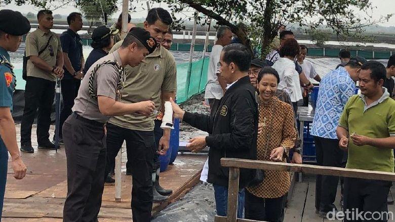 Detik-detik Jokowi Berdarah Kena Patil Udang yang Tiba-tiba Loncat
