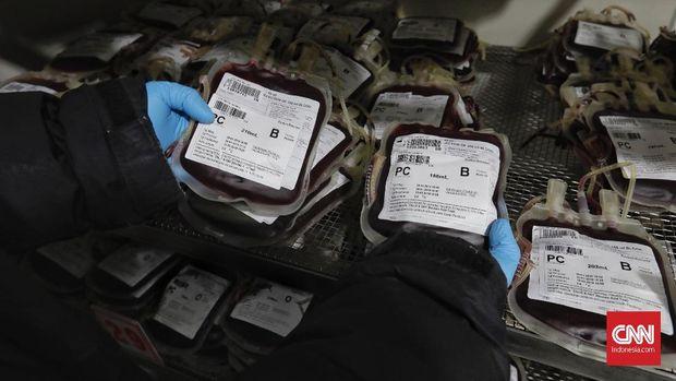 Strategi PMI Penuhi Stok Darah di Saat Pandemi Corona