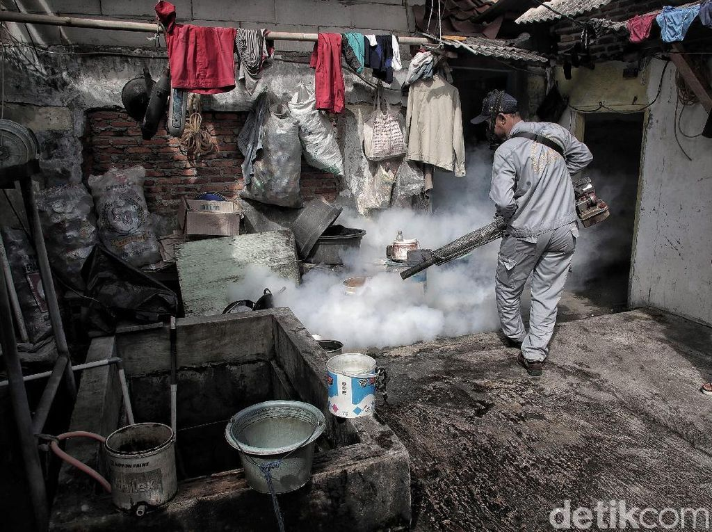 4 Meninggal karena DBD di Klaten, Rumah Kosong Jadi Sarang Nyamuk