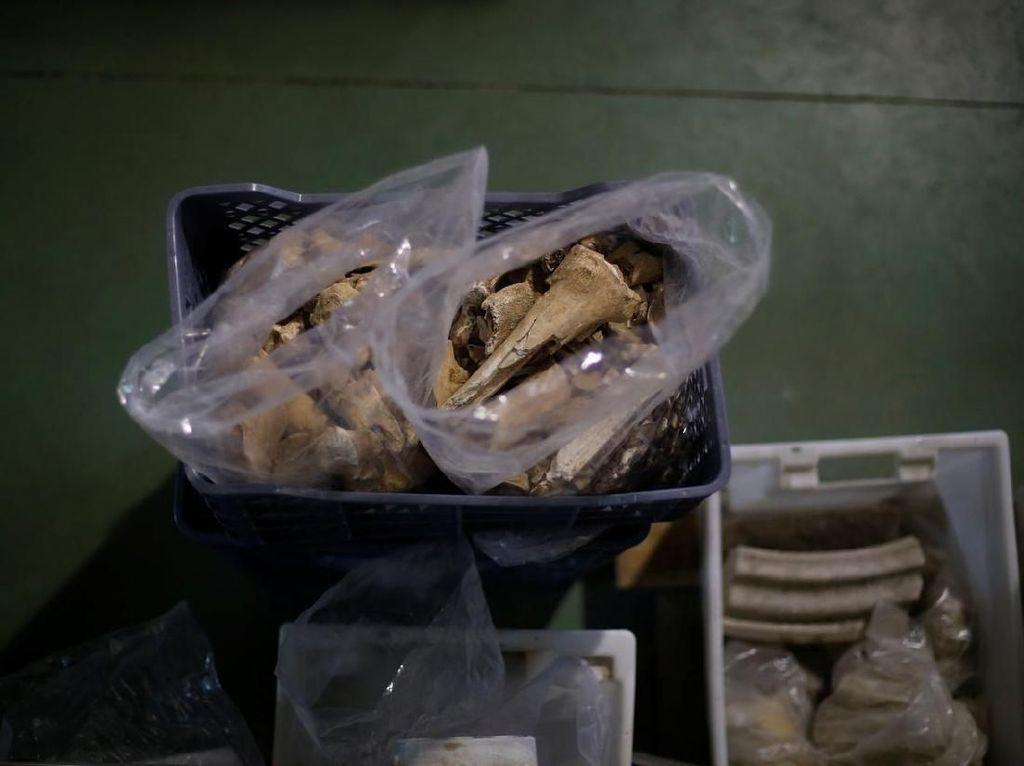 Ada Makam Kuno dan Tulang Manusia Berusia Ribuan Tahun di Bawah Restoran Ini