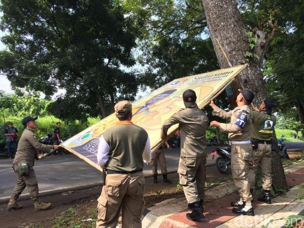 Atribut Caleg Penghuni Pohon Dicopot Satpol PP Banjar