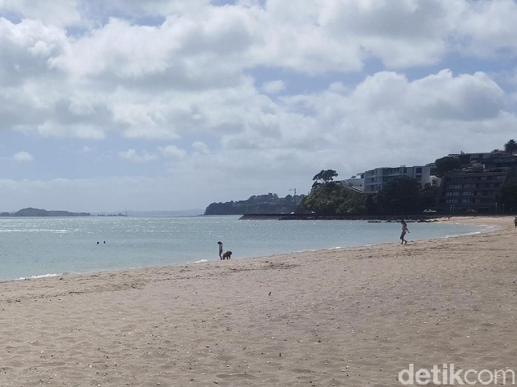 Mission Bay, Pantai Paling Asyik di Auckland