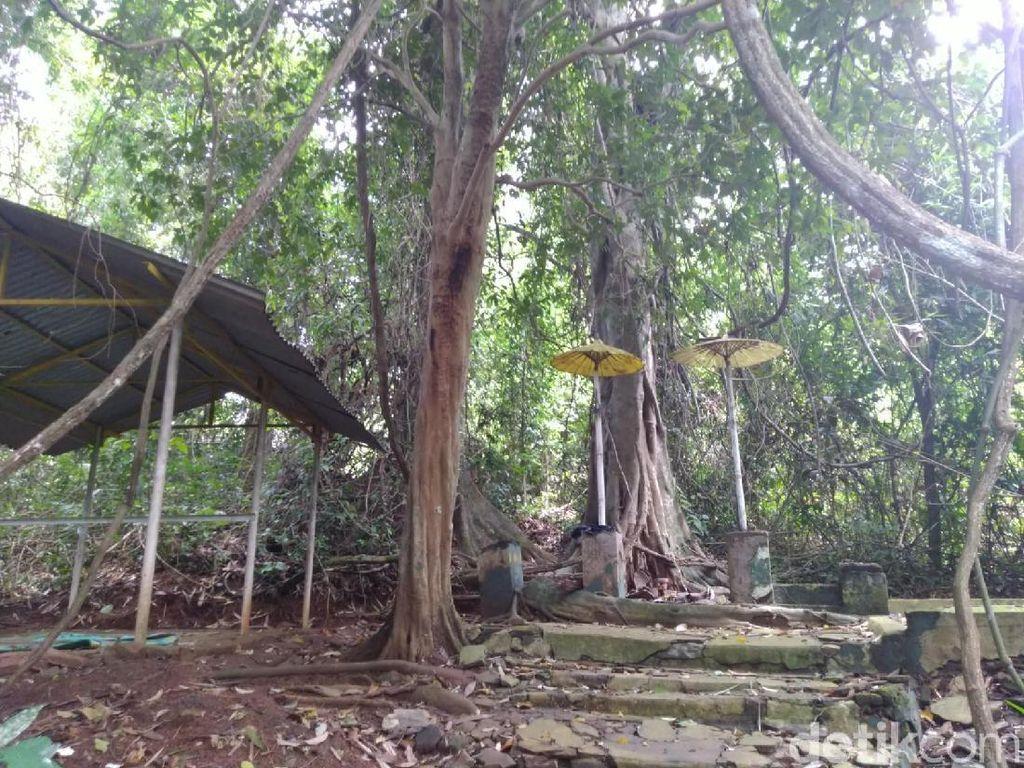 Potret Hutan di Banjar yang Lekat Nuansa Mistis