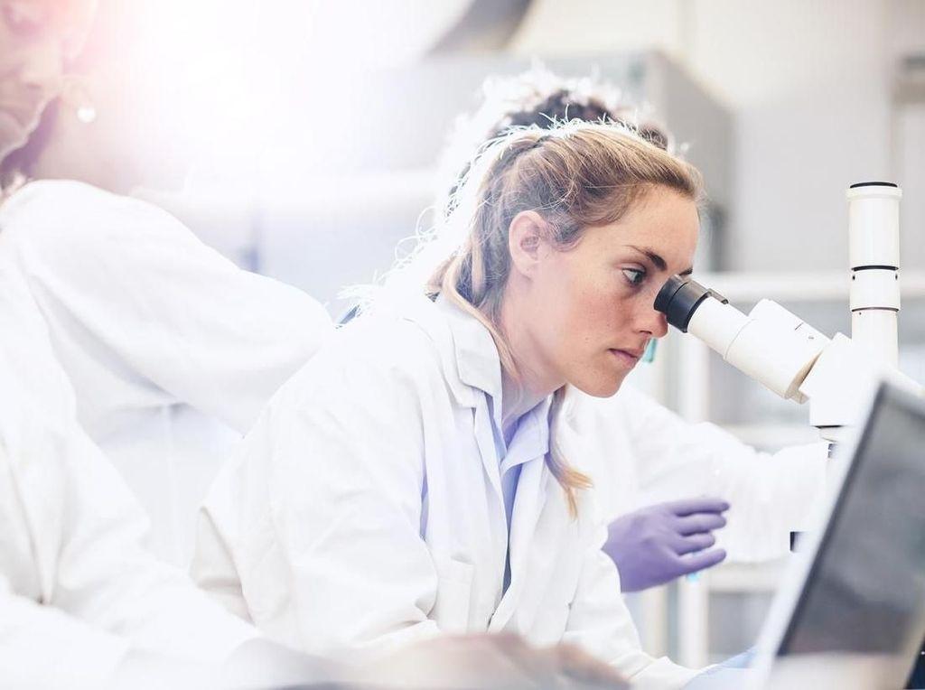 Penyakit Misterius di Jeneponto Akan Dicek dengan PCR, Teknik Apa Itu?