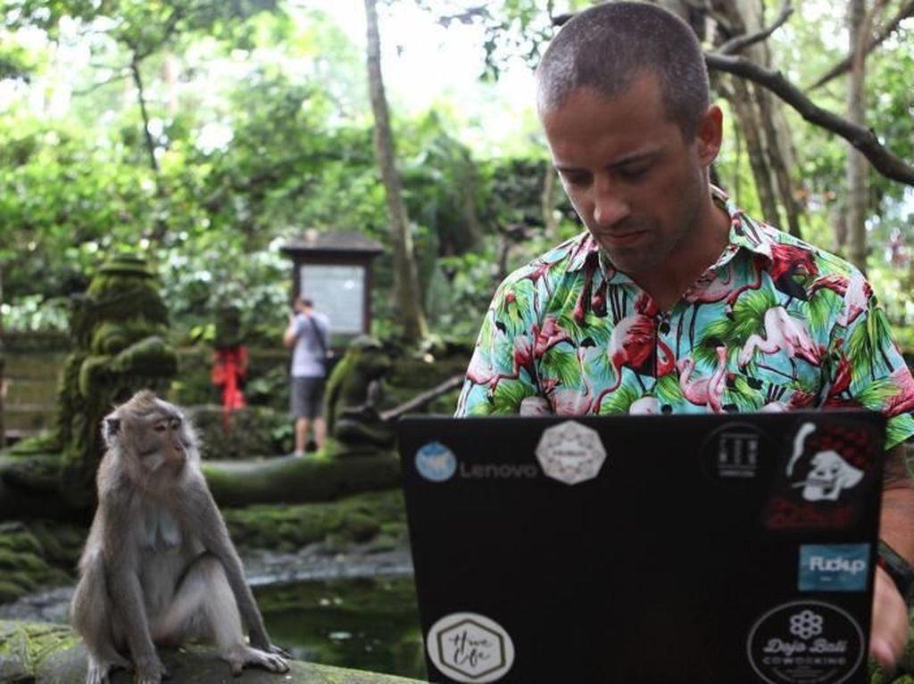 Potret Kehidupan Perantau Digital Asing di Bali