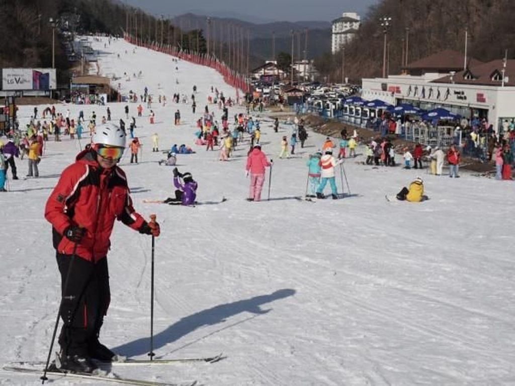 Main Ski di Negeri Ginseng, Seru!