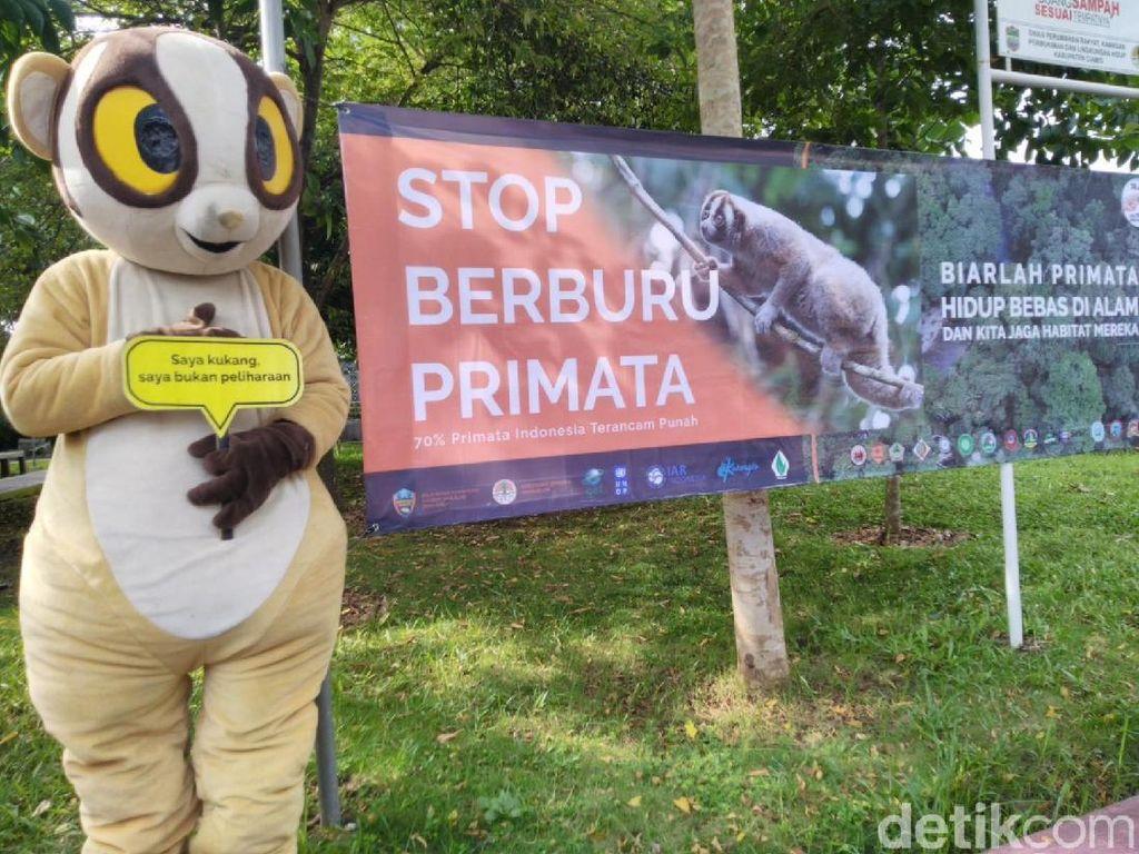 Animal Rescue Edukasi Pelajar Ciamis Cegah Peburuan Primata