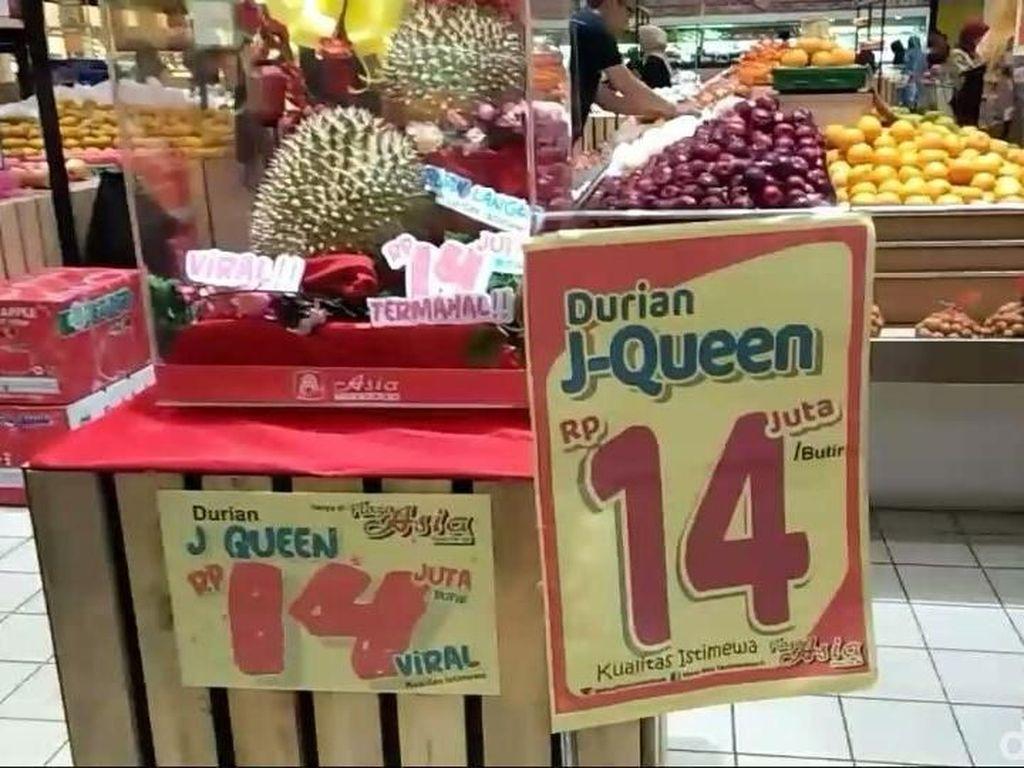 Pernah Bikin Heboh! Ini Durian J-Queen yang Dijual Rp 14 Juta