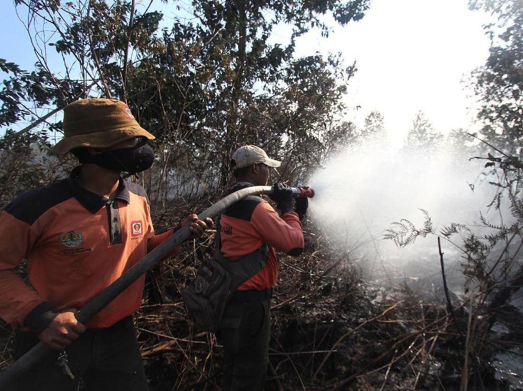 Potret Perjuangan Pemadaman Api di Kebakaran Hutan Dumai