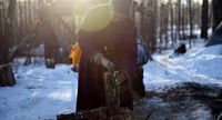 Suku Dukha hanya hidup dari hutan (Taylor Weidman/BBC Capital)