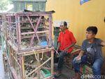 Cerita Samsul Untung Besar Jual Burung Pipit di Vihara Saat Imlek