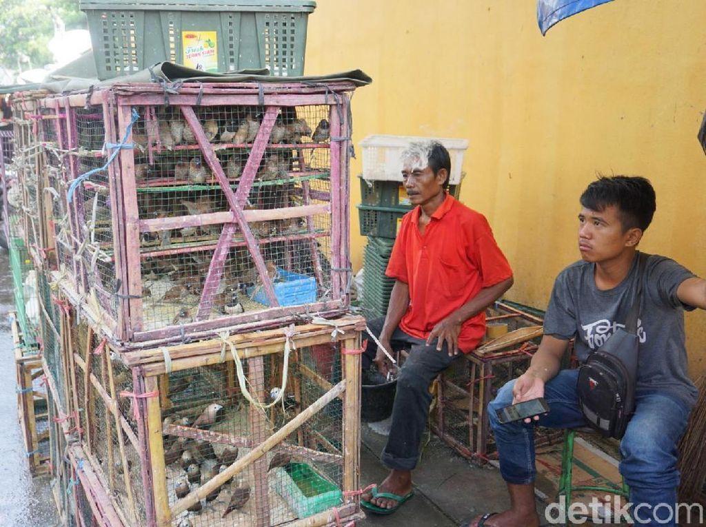 Cuan Pedagang Burung Melejit di Perayaan Imlek