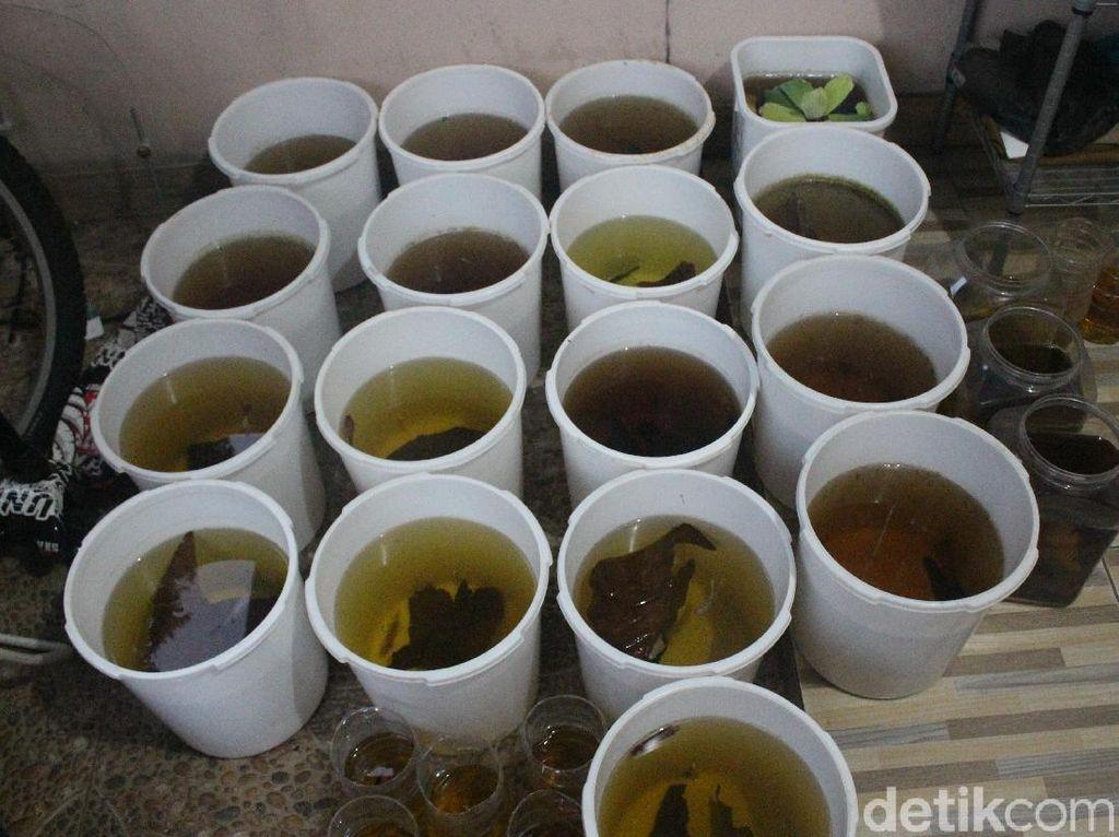 Takut Kena Fogging DBD, Kolektor Sebar Seratusan Ikan Cupang di Jaksel