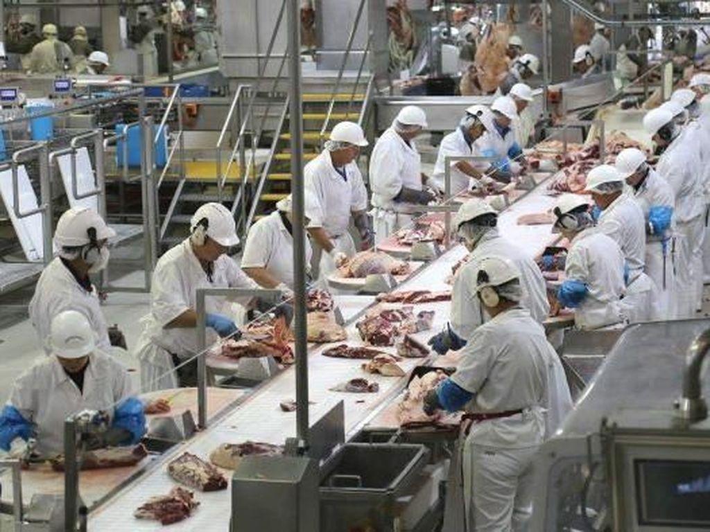 Ngeri... 1.553 Pekerja Pabrik Daging di Wilayah Ini Positif Corona