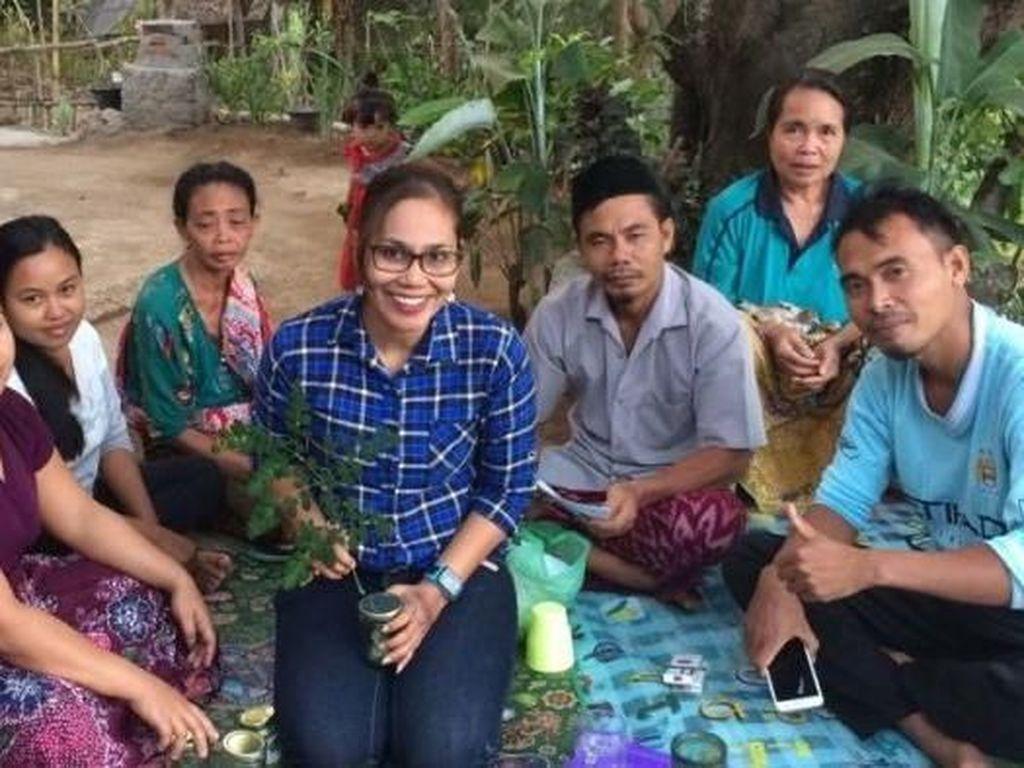 Mukjizat Daun Kelor Gerakkan Ekonomi di Lombok