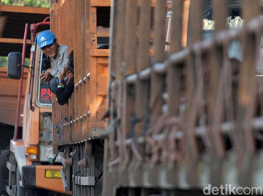 Aksi Nekat Menumpang Truk Lintas Pantura