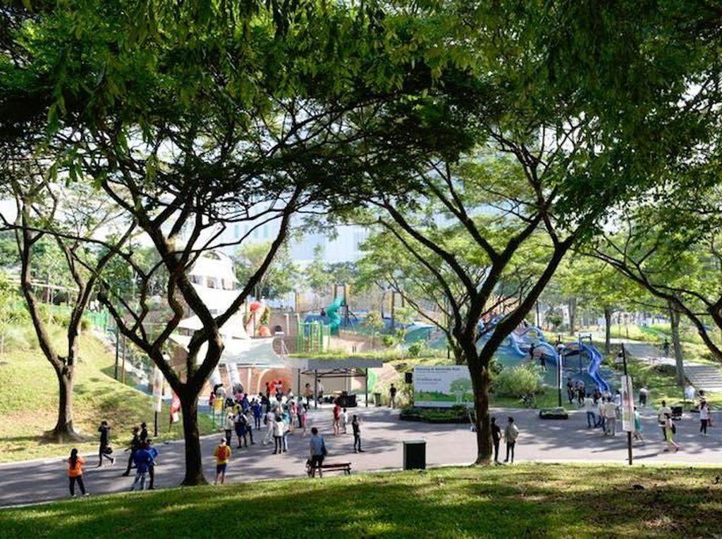 7 Tempat Ini Bisa Jadi Lokasi Piknik Ciamik di Singapura