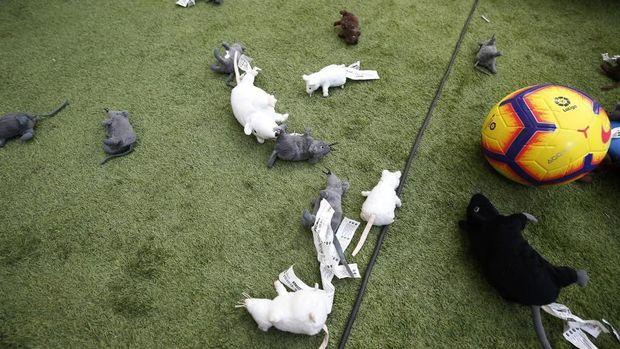 Courtois Disambut Tikus di Wanda Metropolitano