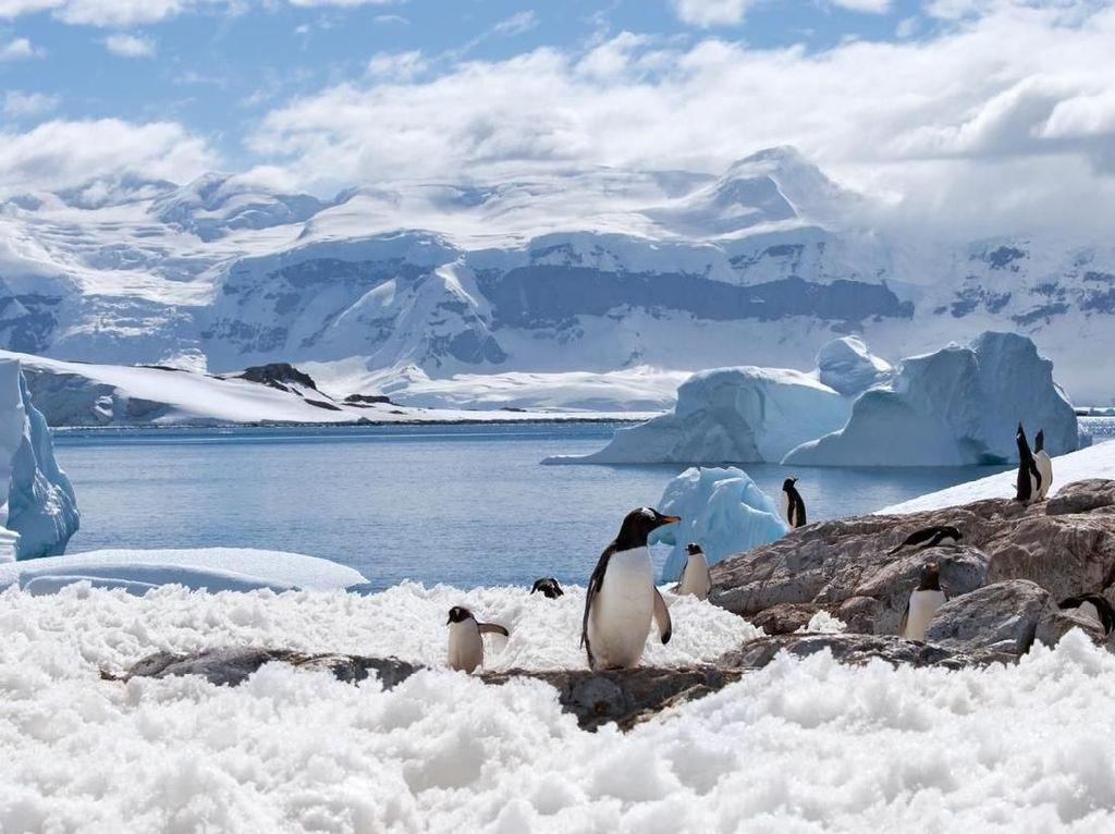 Mengenal Pulau Bulan Sabit di Kutub Selatan