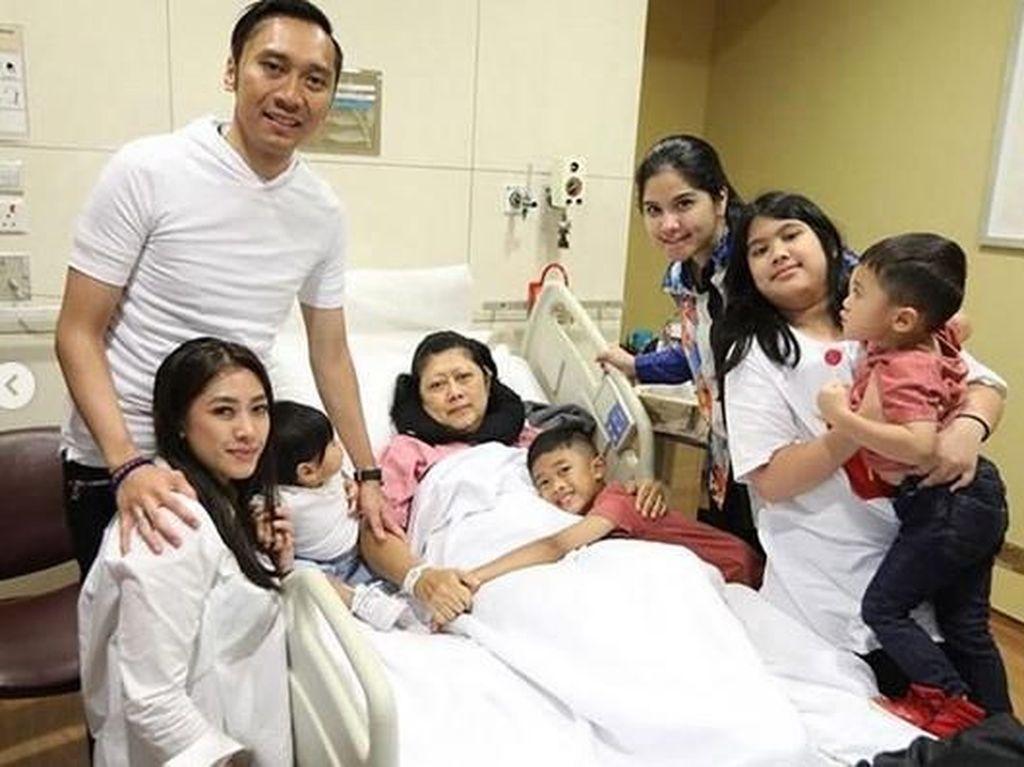 Berbagai Faktor Risiko Kanker Darah, Penyakit yang Diidap Ani Yudhoyono