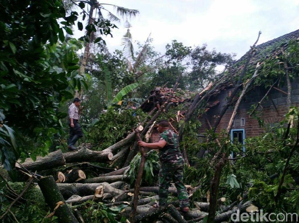 Puting Beliung di Blitar, Puluhan Pohon Tumbang Timpa Rumah Warga