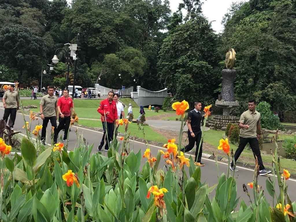 Jelang Debat dengan Prabowo, Jokowi Lari Pagi di Kebun Raya Bogor