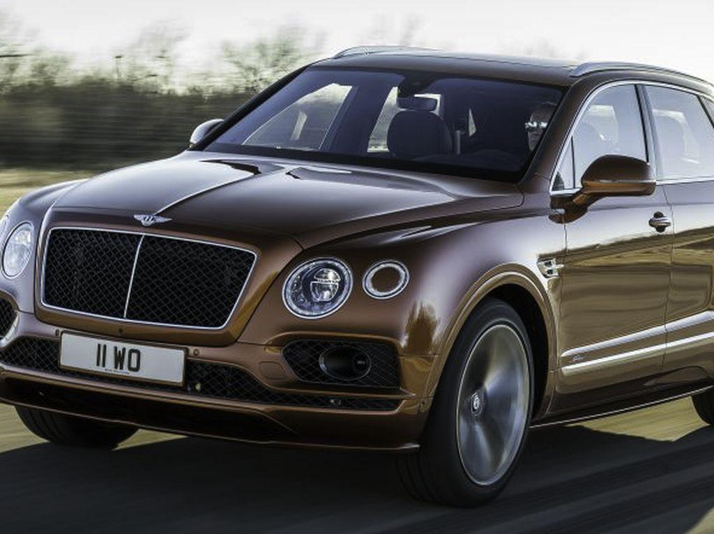 Bentley Tantang Lamborghini Urus Rebut Gelar SUV Tercepat di Dunia