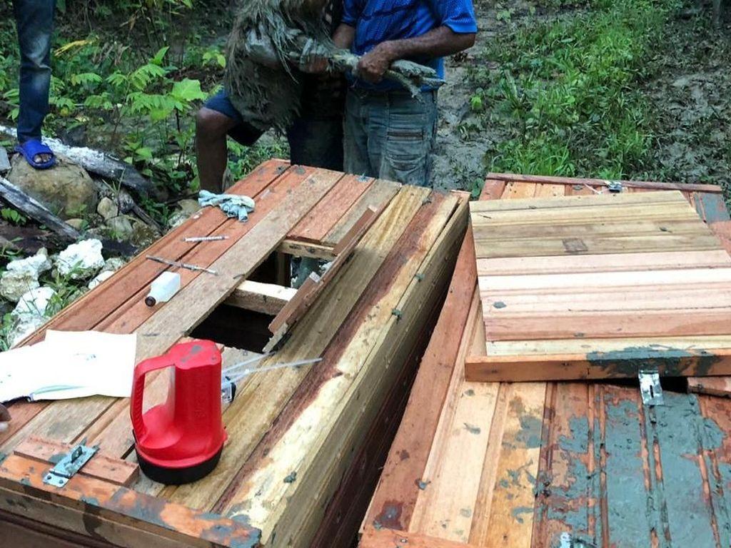 8 Ekor Kasuari Dilepasliarkan ke Papua