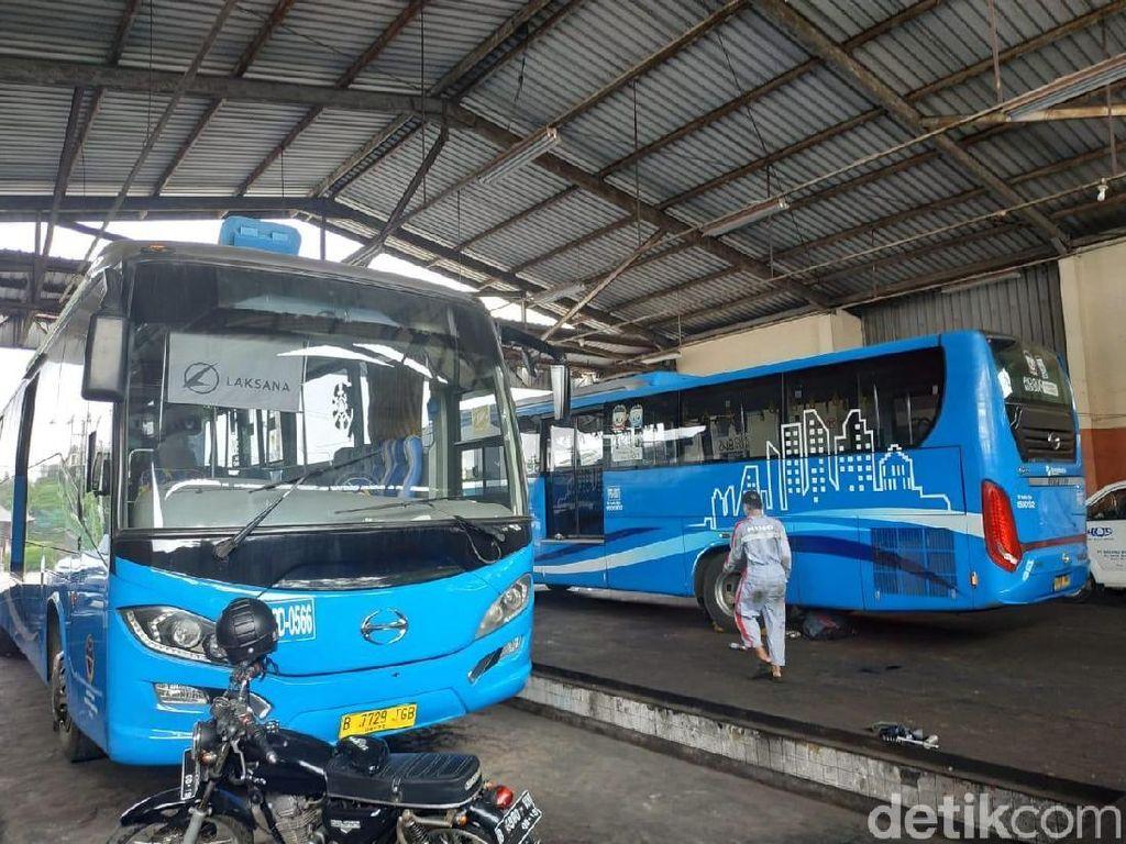 Armada Bus PPD yang Tidak Lagi Rongsok