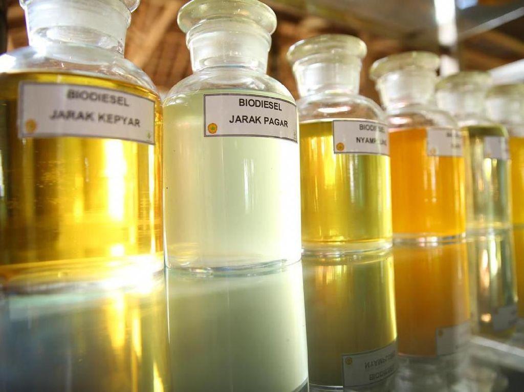 Besok, Biodiesel 30% Diuji Coba