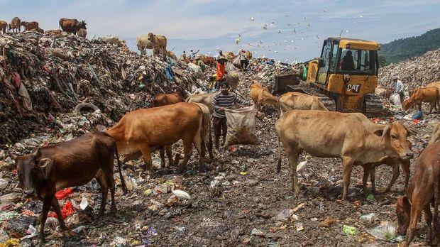 Sejumlah pemulung mencari barang bekas di Tempat Pembuangan Akhir (TPA), kawasan Air Dingin, Padang, Sumatera Barat, Senin (14/1/2019). Sampah yang masuk ke TPA Air Dingin mencapai 500 ton per hari dan dipredikisi empat sampai lima tahun ke depan kapasitas TPA itu tak mampu lagi menampung sampah. ANTARA FOTO/Muhammad Arif Pribadi/foc