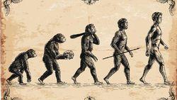 Kepunahan Manusia Neanderthal, Alasan Kenapa Incest Berbahaya