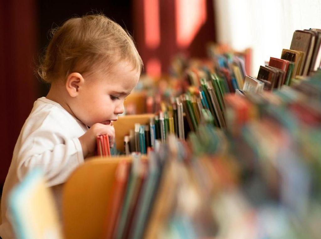 Pilihan Buku Terbaik untuk Bayi Baru Lahir Hingga Balita