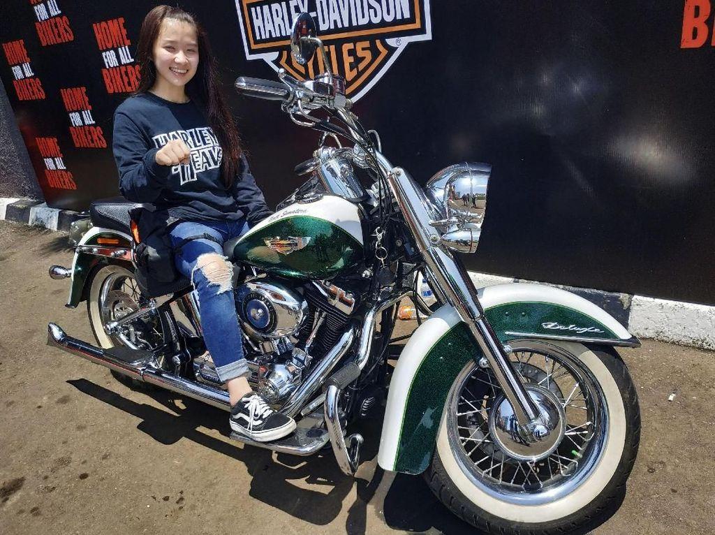 Dara Penjinak Harley