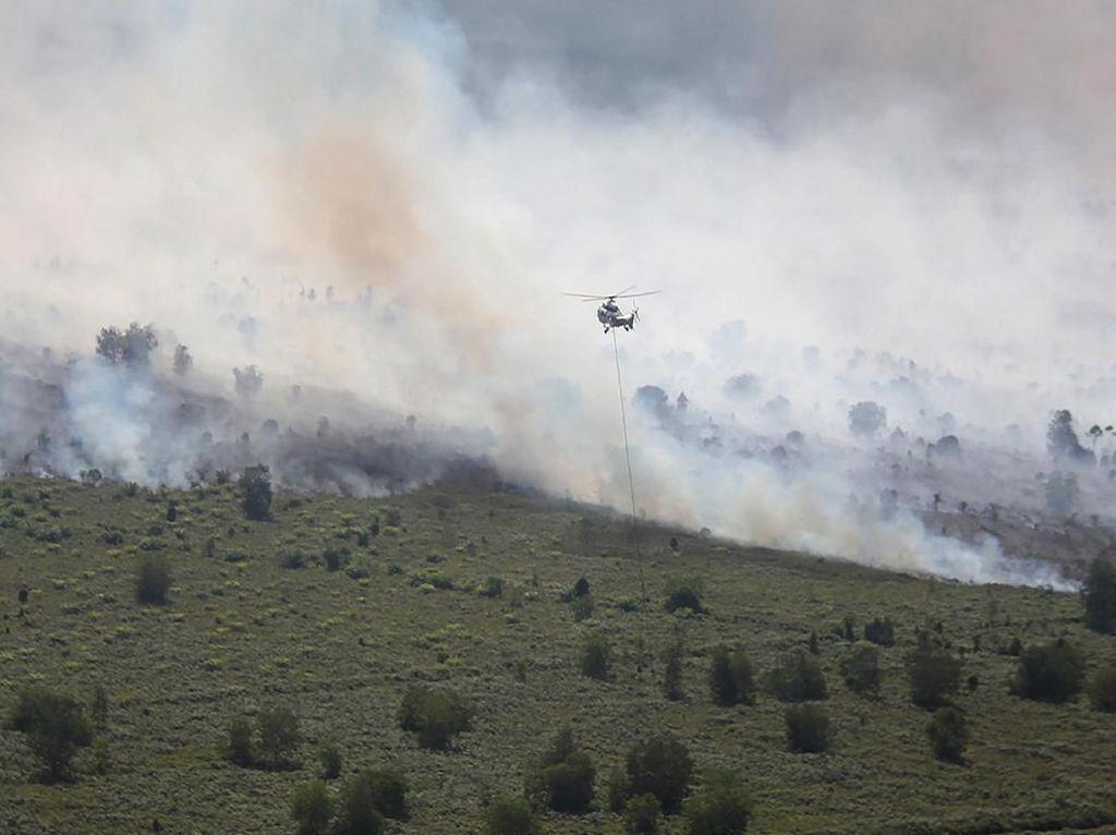 Karhutla di Riau Meluas, Rengat Dikepung Asap