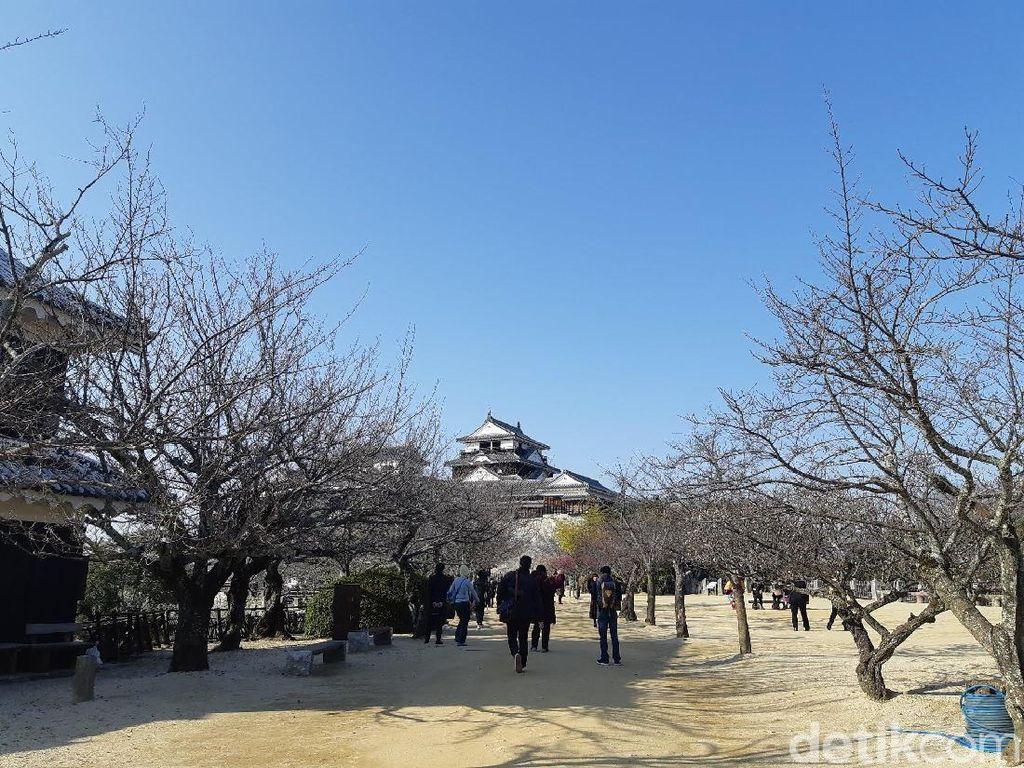 Kastil di Jepang Dibikin Pakai Telur dan Batu, Percaya?