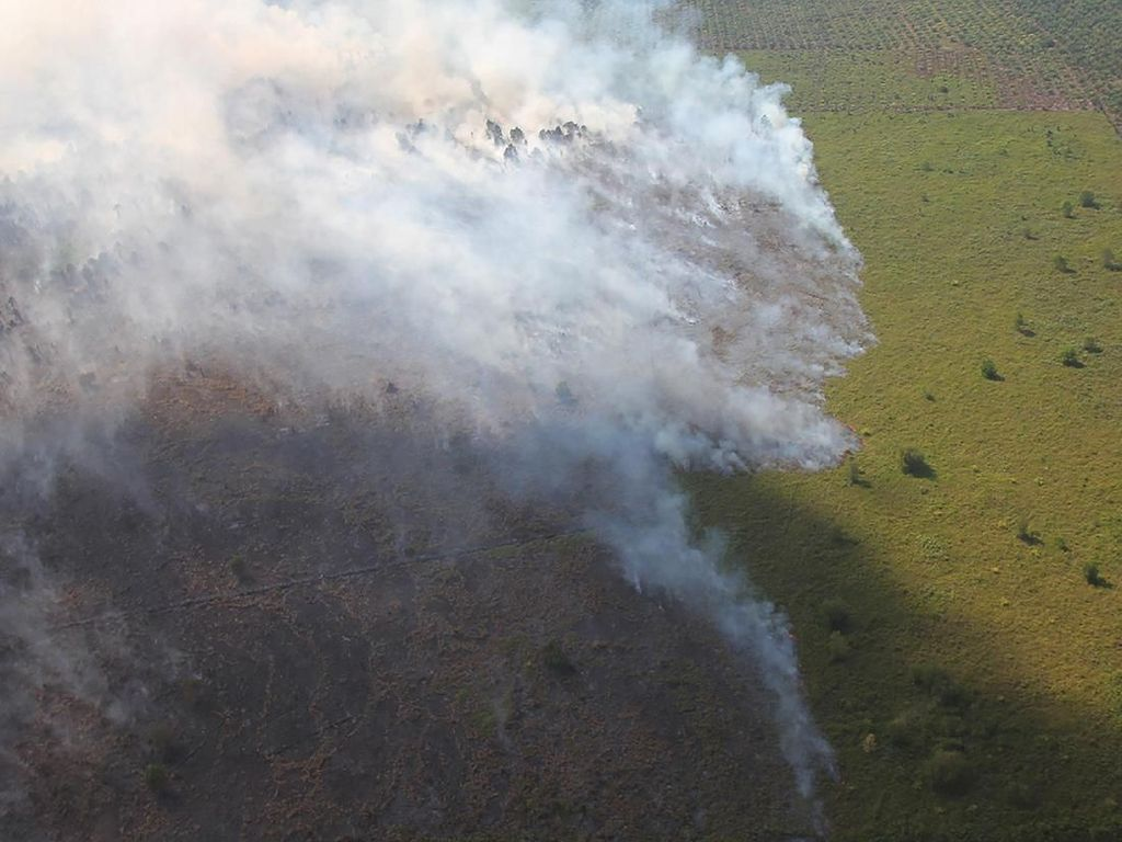 Sudah 6 Hari Kepulauan Meranti Riau Dilanda Kebakaran Hutan