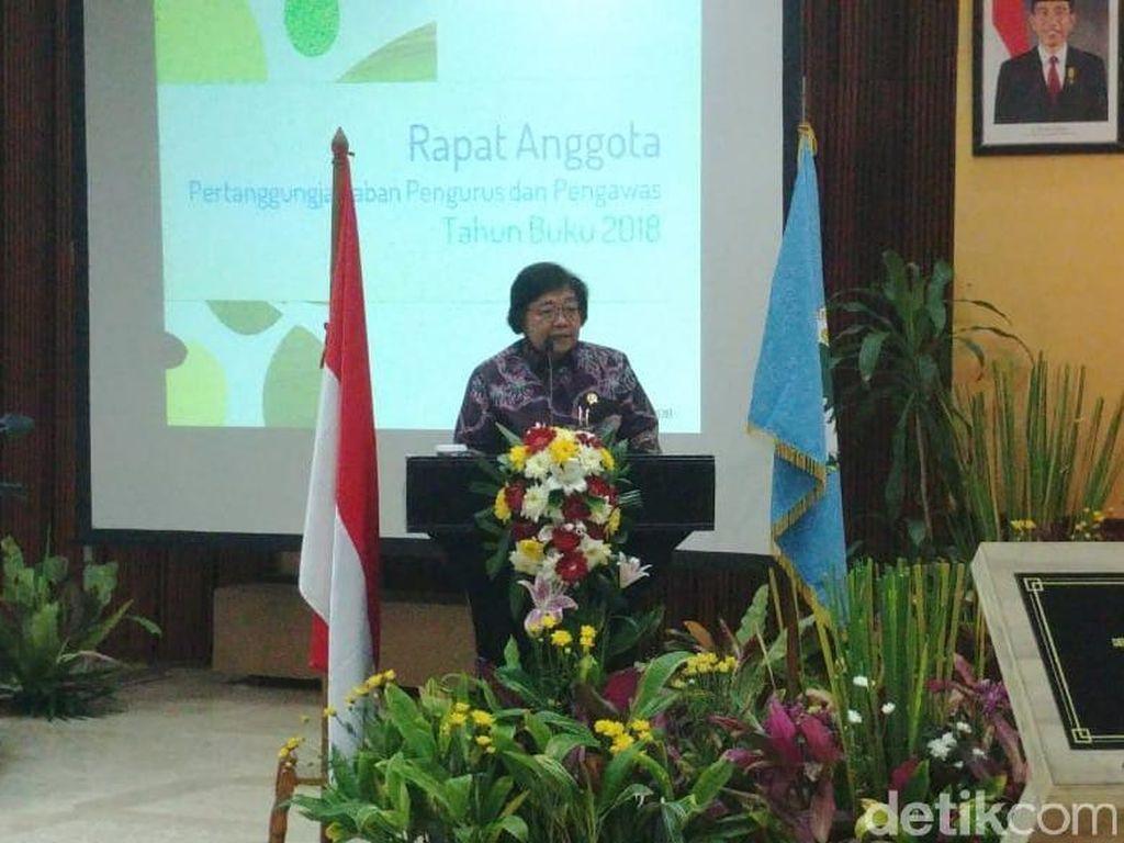 Menteri LHK soal Kebakaran Hutan Riau: Sudah Ditetapkan Siaga Darurat