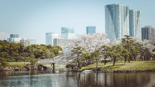 Lokasi Foto Prewedding nan Instagramable di Tokyo