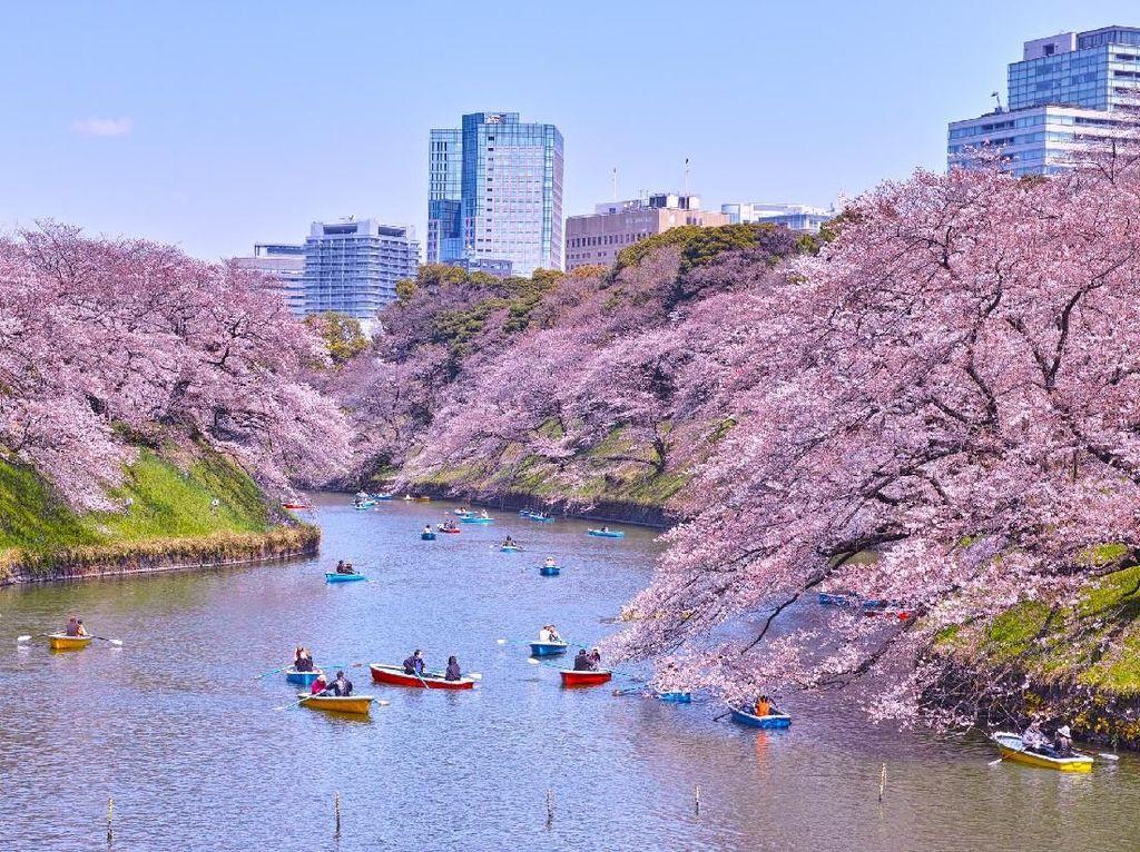 Foto: 7 Tempat Romantis di Tokyo untuk Syahrini dan Reino Barack